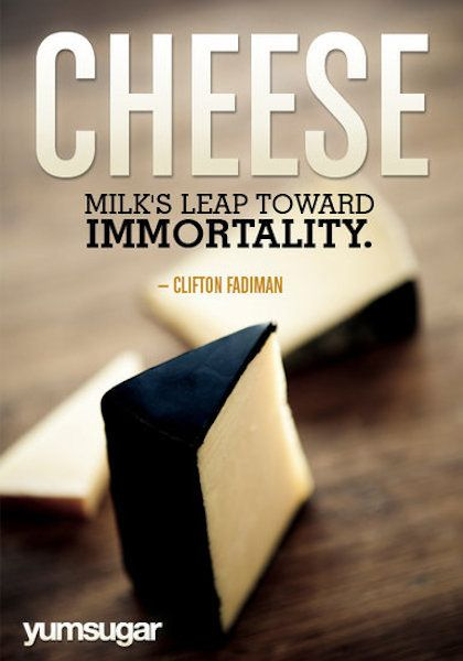 Milk Food Picture Quote Funnies