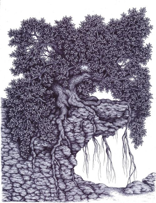 ballpoint pen drawing leaves nature