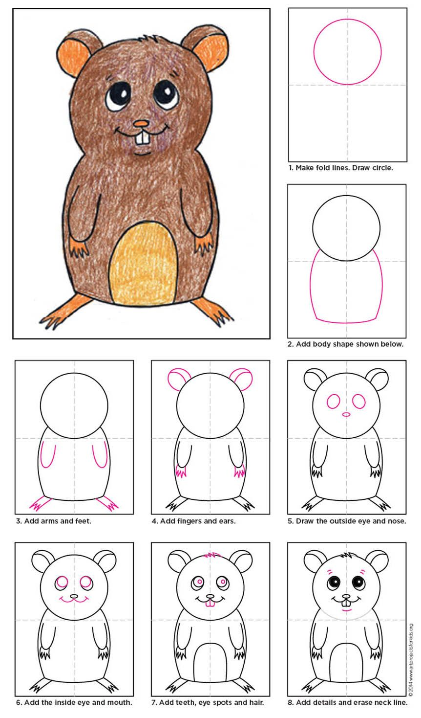 How to Draw a Hamster Drawing for kids, Art projects