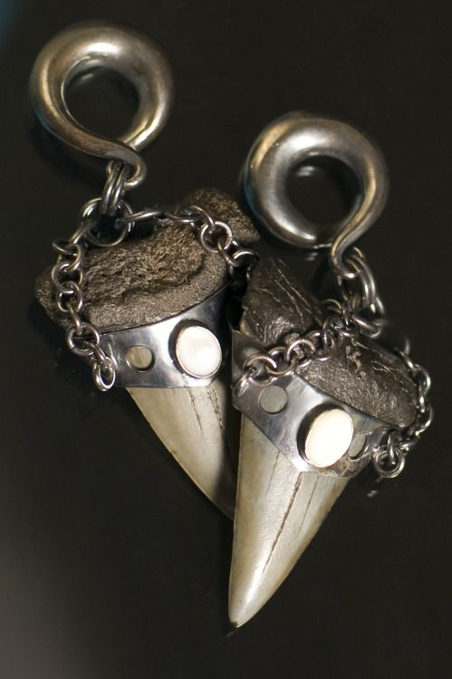 2e1091010 Diablo Organics Megalodon Teeth Ear Weights | Body Jewelry Wish List ...