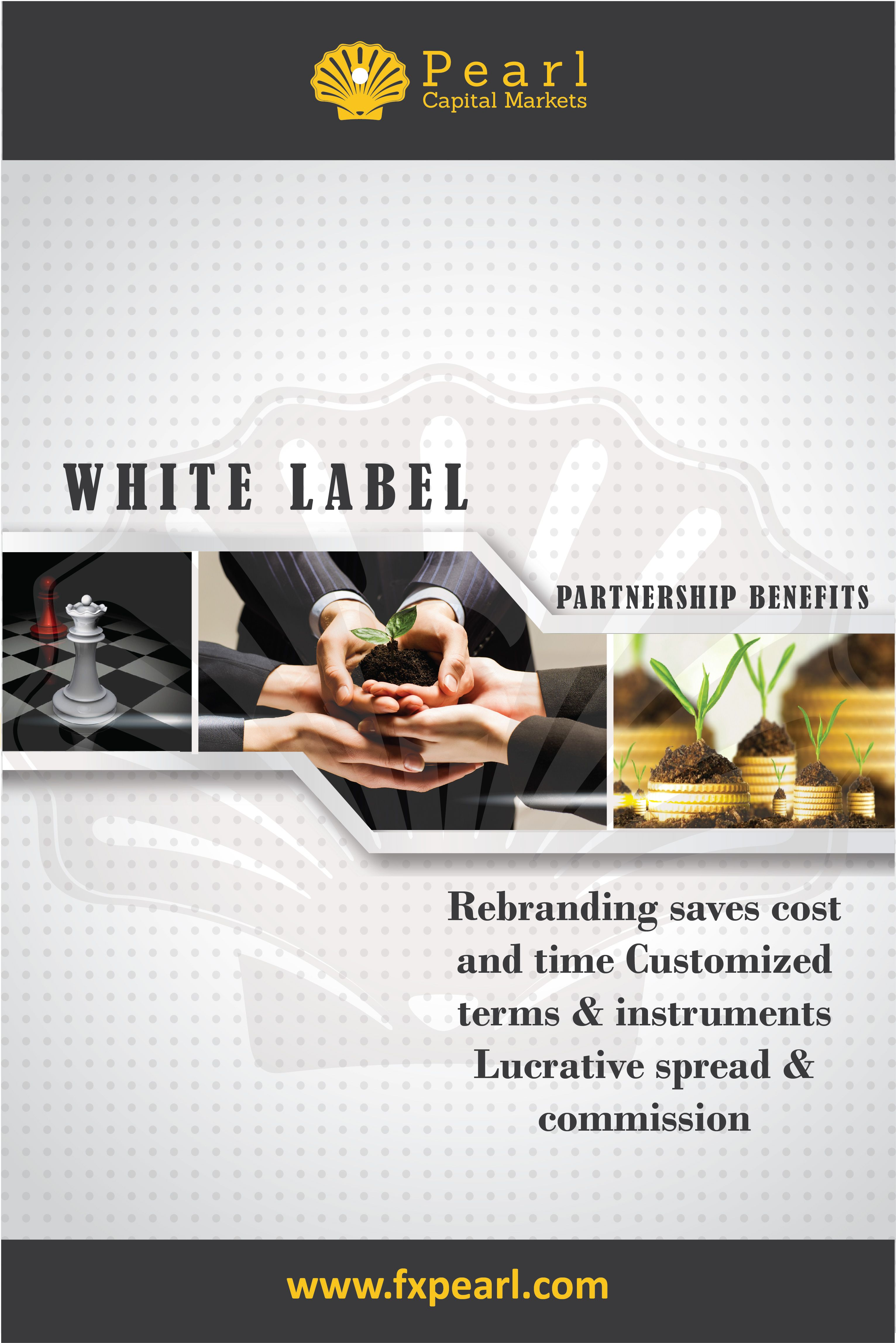 Be A White Label Partner To Avail Customized Forex Trading Commission And Spread On Foreign Exchange Rates Stay In Profit As Broker Of