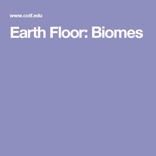 Amazing Earth Floor: Biomes | Teaching | Pinterest | Biomes