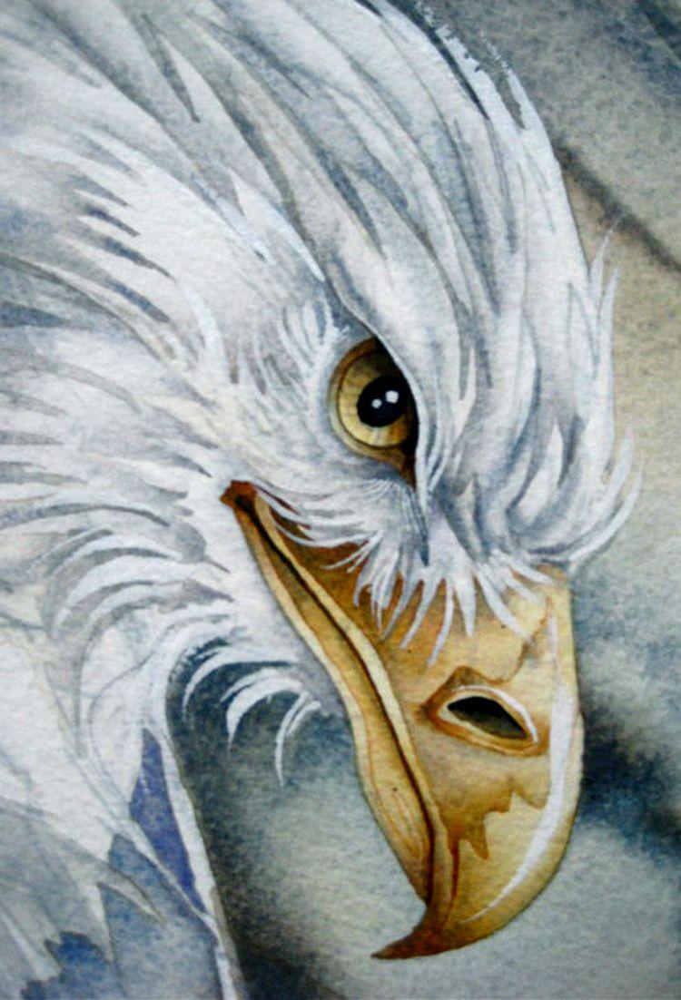 """Spirit of the Wind (zoom)"" par Jody Bergsma"