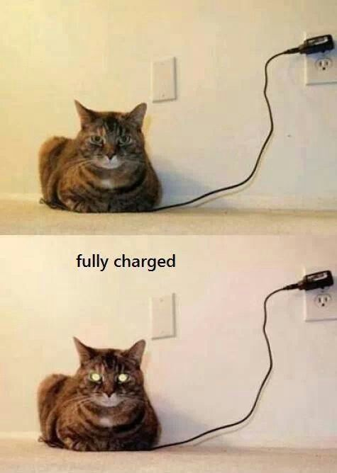 Fully charged!