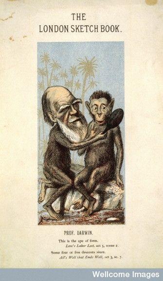 Http Thinkingshift Files Wordpress Com 2007 07 L0003760 Jpg L0003760 Jpghere S A Caricature Of Poor Old Charles Darwin Depic Sketch Book London Sketch Darwin