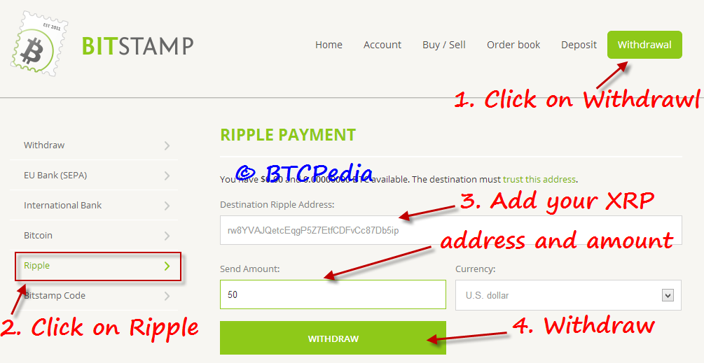 ripple contact number