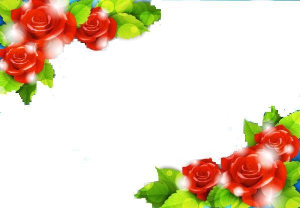 Roses Corners Borders Design Border Design Flower Border Photo Frame Wallpaper