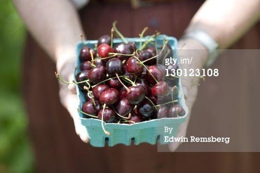 Stock Photo : Cherries
