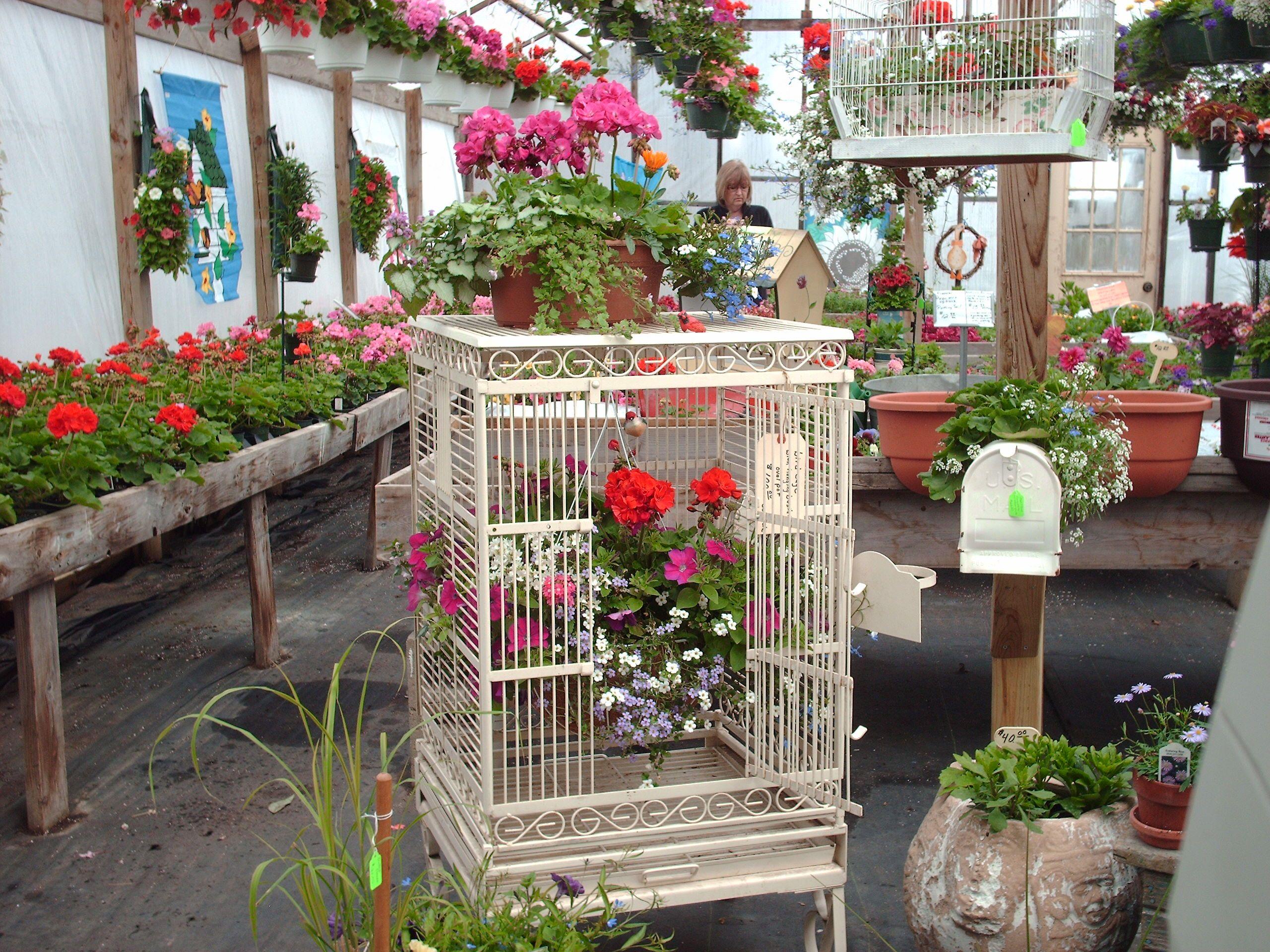 Superb Gustafsonu0027s Greenhouse And Garden Essentials, Ludington, ...