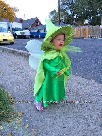 Cutest Flora Fauna And Merryweather Fairy Costumes Fairy