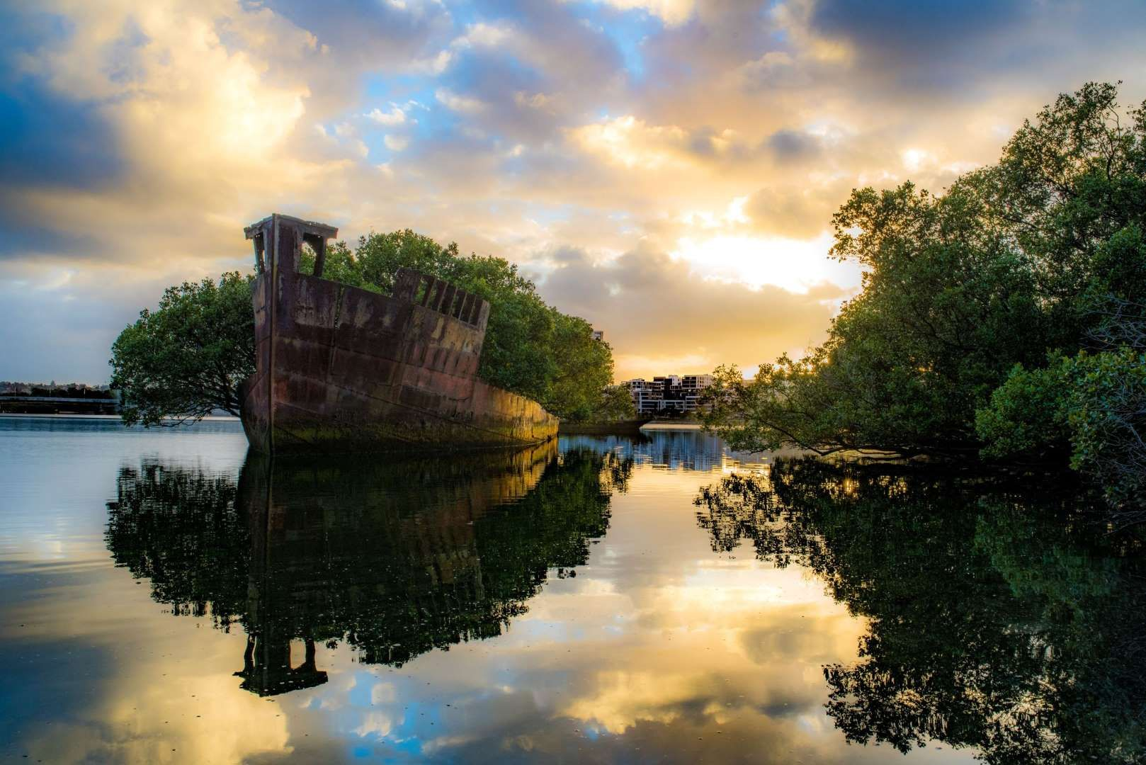 SS Ayrfield Shipwreck At Homebush Sydney Olympic Park