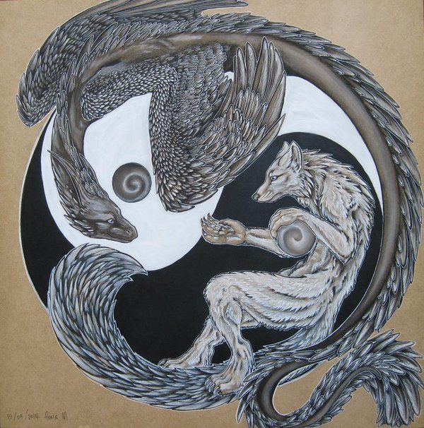 White wolf and black dragon circling each other in the yin yang ...