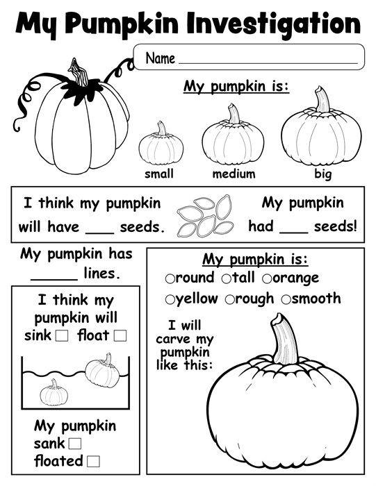 Pumpkin Investigation Worksheet  Free Printable  Investigations