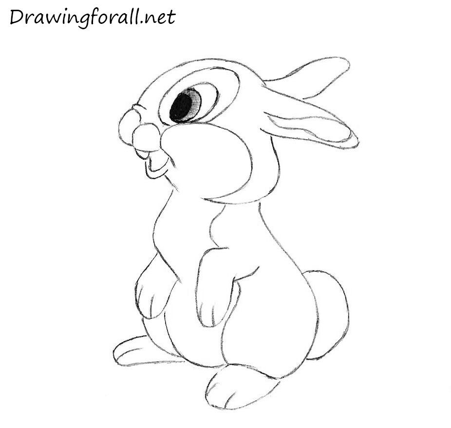 How To Draw A Rabbit For Kids Drawing Drawings