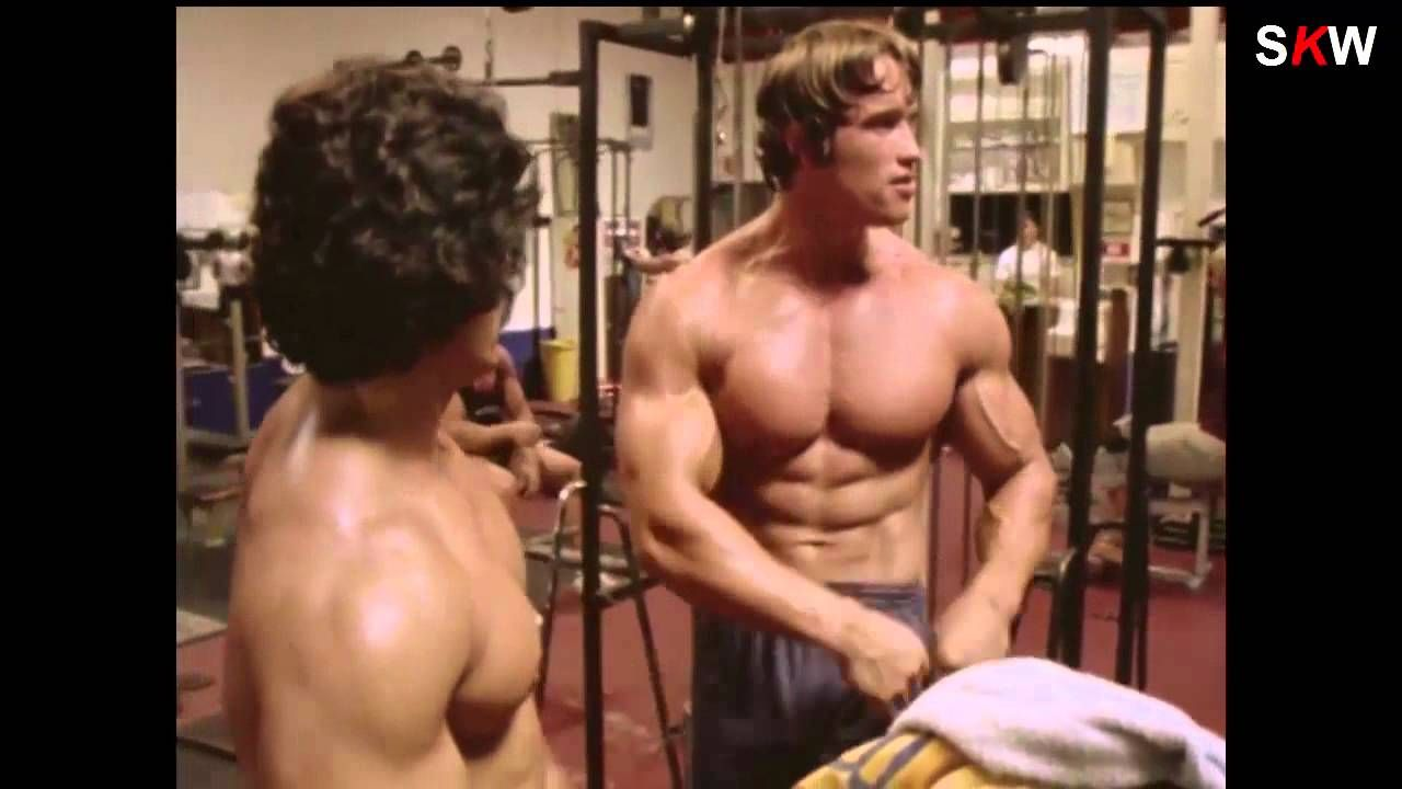 Arnold schwarzeneggers blueprint to cut main vision uncut arnold schwarzeneggers blueprint to cut main vision uncut motivation malvernweather Image collections