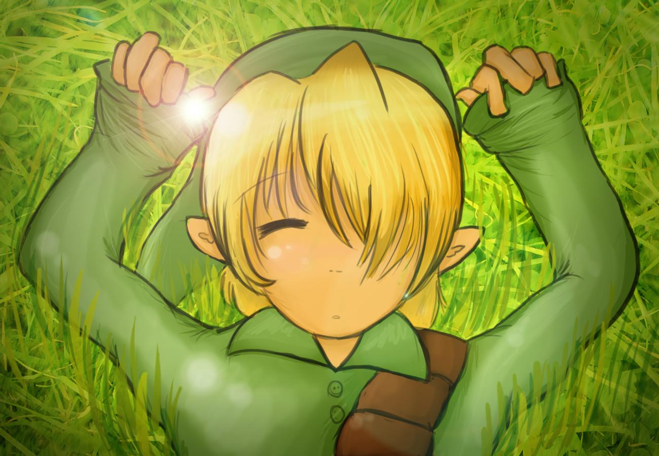 Cute Legend Of Zelda Wallpaper Link Sleeping Legend Of