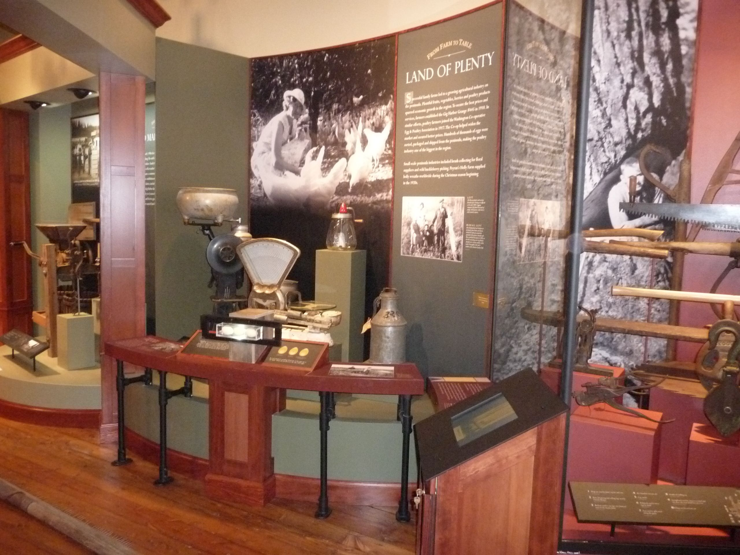 History Museum Display Case