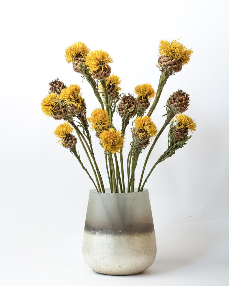 Natural Dried Flowers Dried Cornflowers Dry Bouquets Dried Flowers Cornflower Centaurea Boho Homedecoration Autumn Decorations Dried Bouquet Dried Flowers Flowers