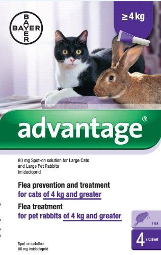 Cool Advantage 80mg Spot On Solution For Large Cats And Pet Rabbits Over 4kg Large Cats Cat Fleas Cat Pet Supplies