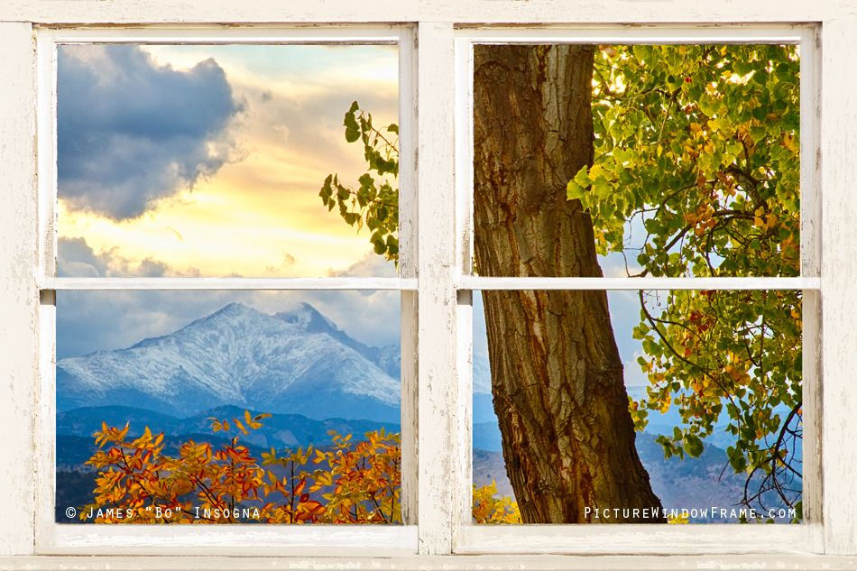 scenic window film decorative scenic window film google search windows with view pinterest
