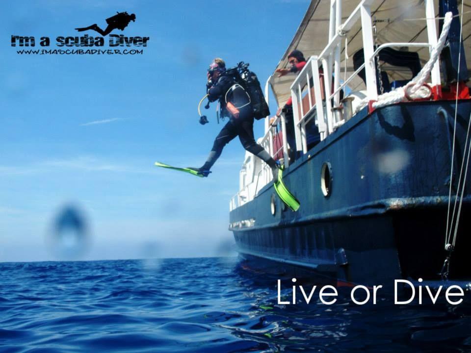 Great Dive!  http://www.imascubadiver.com