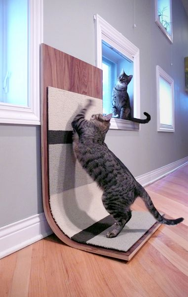 modern cat scratcher- can be hung on the wall or placed about anywhere