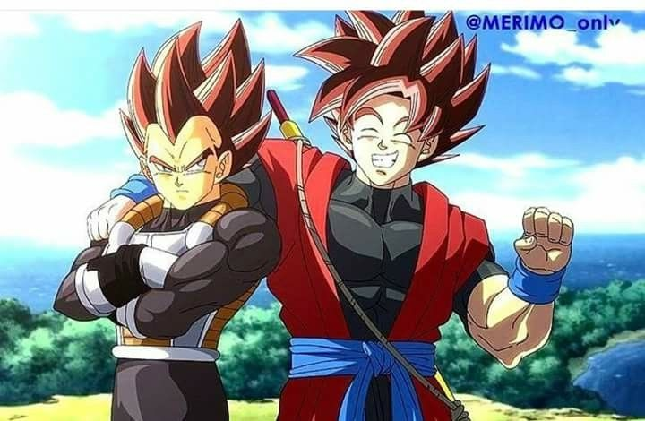 Xeno Goku and Vegeta