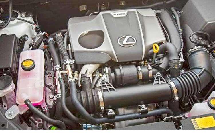 2019 Lexus NX Interior and Exterior