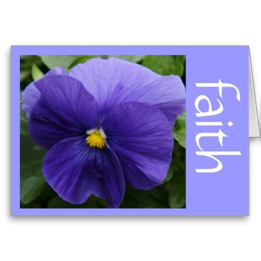 Purple Pansy, W Scripture Verse On Faith (Luke) Inside