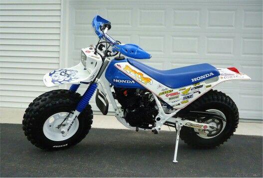 Honda 200 Fatcat Honda Bikes Motorcycle Bike Drift Trike