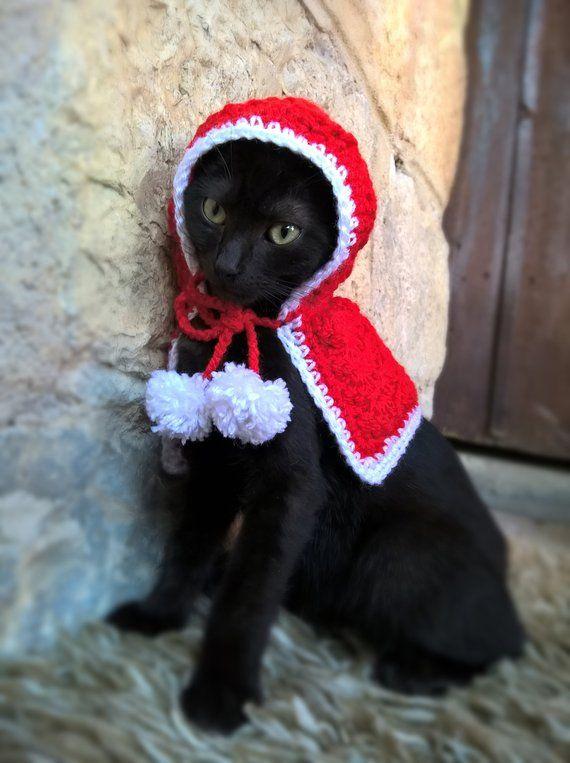 e9b494b9265 Little Red Riding Hood Cat Costume