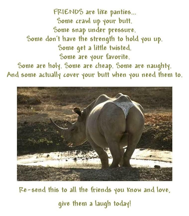 Friends Humor Quotes: Thong-wearing Hippo. Love This!