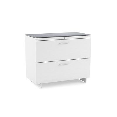 Bdi Centro 2 Drawer Lateral File Cabinet Filing Cabinet Modern File Cabinet Cabinet