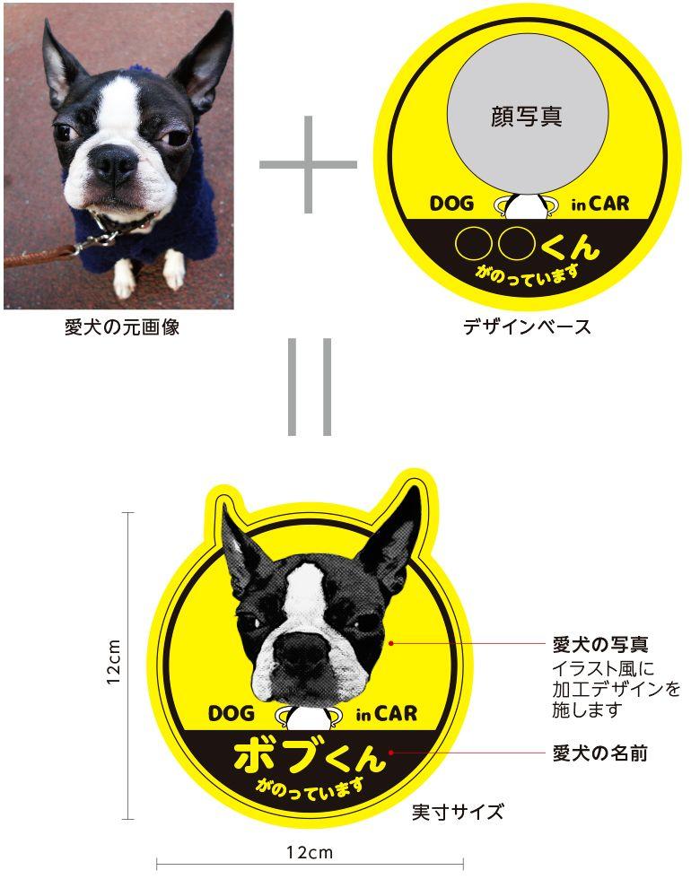 愛犬の写真と名前入り車用ステッカー紹介画像 ステッカー 車用ステッカー 犬