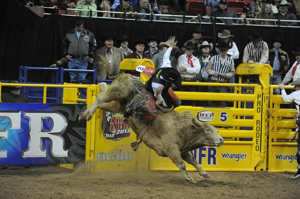 how to score a bucking horse