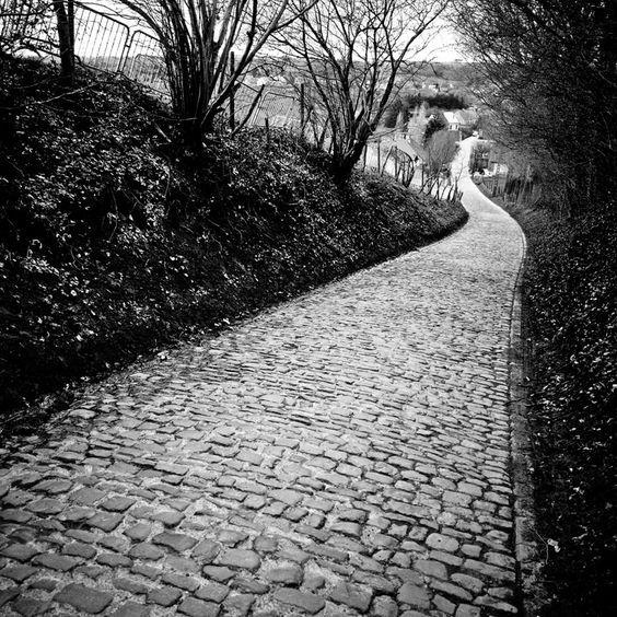 Il Muro di Koppenberg è uno dei muri più duri del Giro delle Fiandre, con le sue pendenze che vanno oltre il 20%. Affrontato sin dal 1975 è stato tolto dal percorso della Ronde dal 1987 al 2002 in seguito alla terribile caduta di Jesper Skibby (1964). 600 metri di muro in pavè, con pendenze fino al 22%. Il piede a terra (e non solo) è all'ordine del giorno...