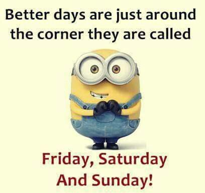 Hurry Up Friday Could You Take Any Longer No That S Not A Dare Funny Minion Quotes Minions Funny Minion Quotes