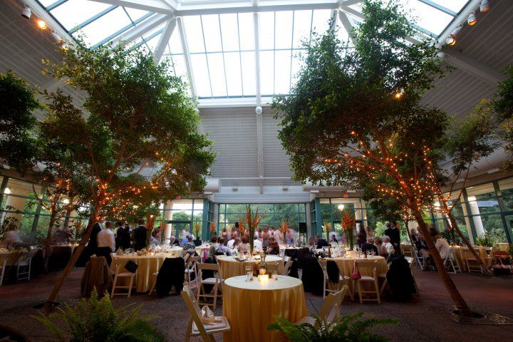 Indoor Reception At The Atrium At Meadowlark Botanical Gardens Vienna Va Where You Say I Do