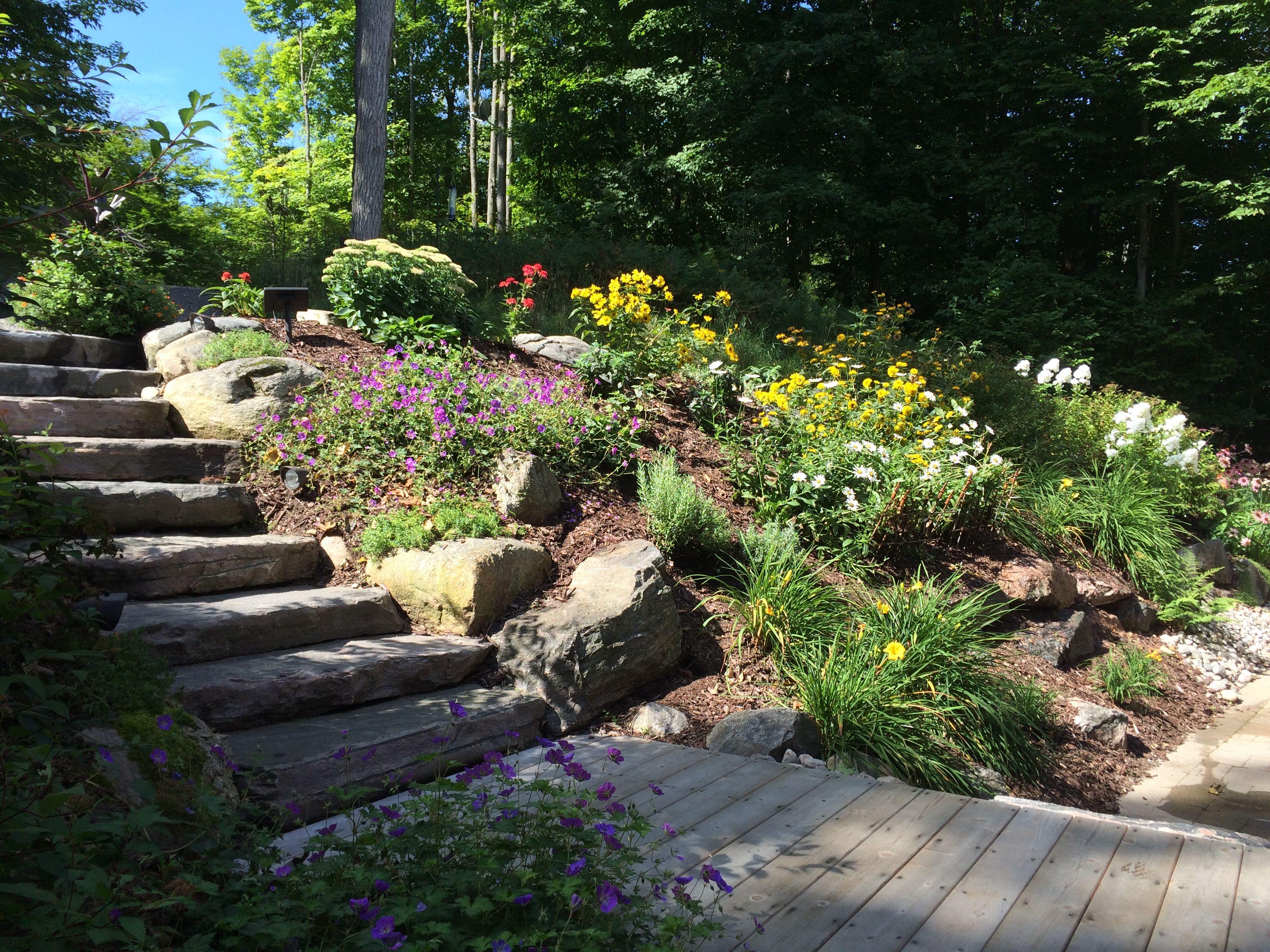 listing joe lake original on muskoka pine little white online rosseau rentals rental cottage