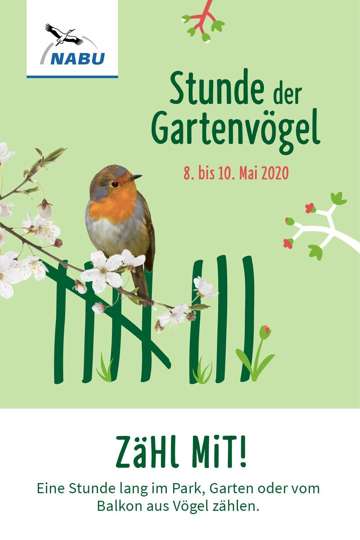 Grosse Vogelzahlung Natur Erleben Mitmach Aktionen Vogelwelt