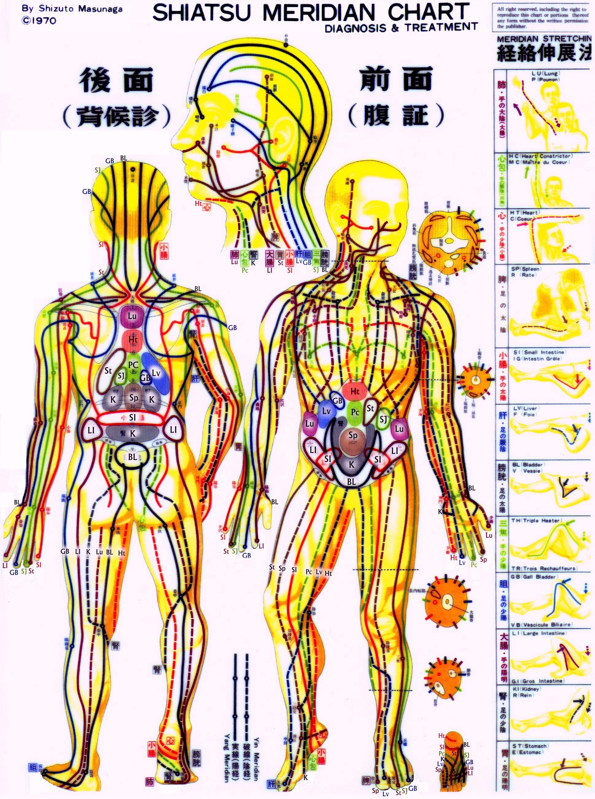 Body Meridian Chart - Google Search Bodytalk-7099