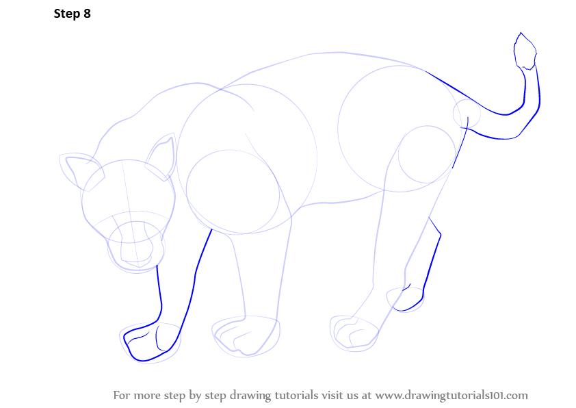 learn how to draw a black panther wild animals step by step drawing
