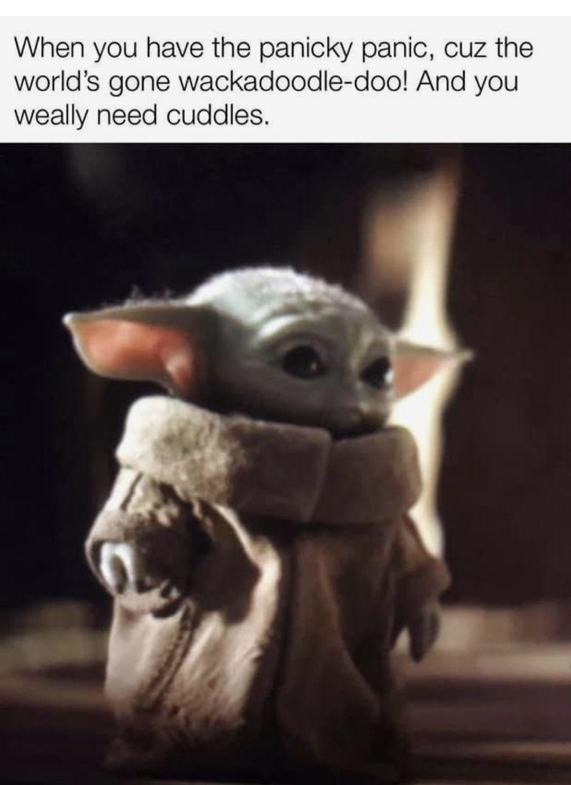 Pin By Anne Gabriel On Baby Yoda Funny Star Wars Memes Yoda Star Wars Humor