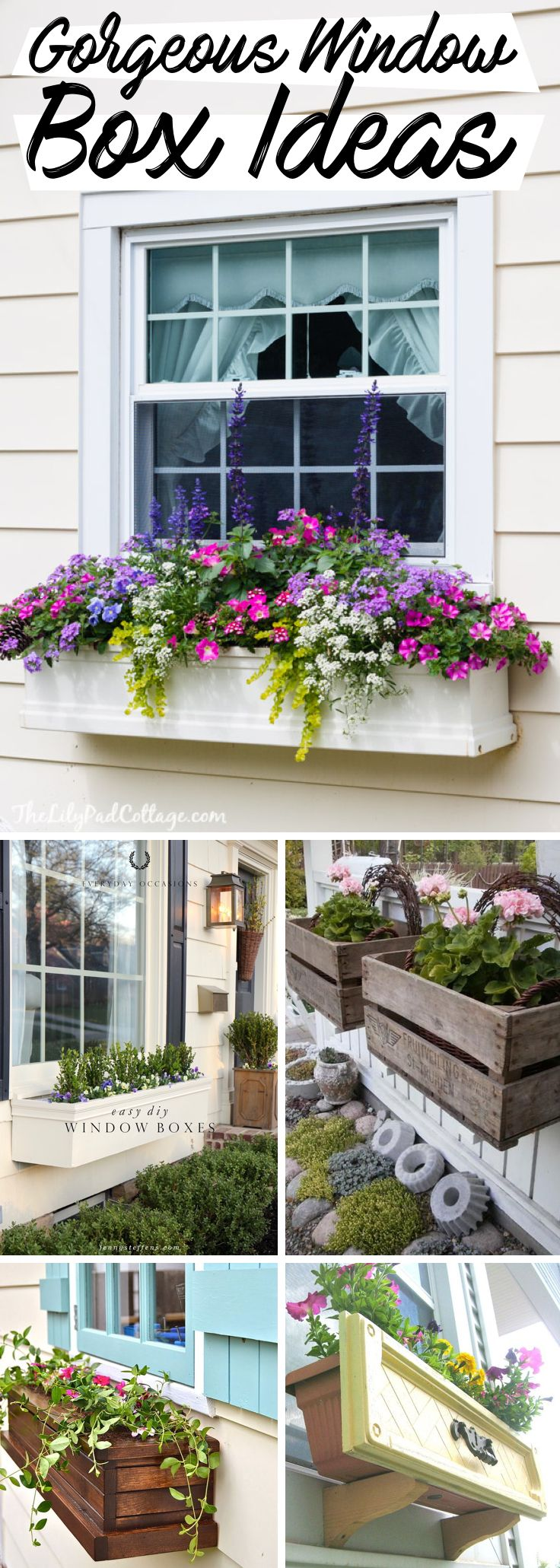 20 Window Box Ideas Adding Floral Magnificence To
