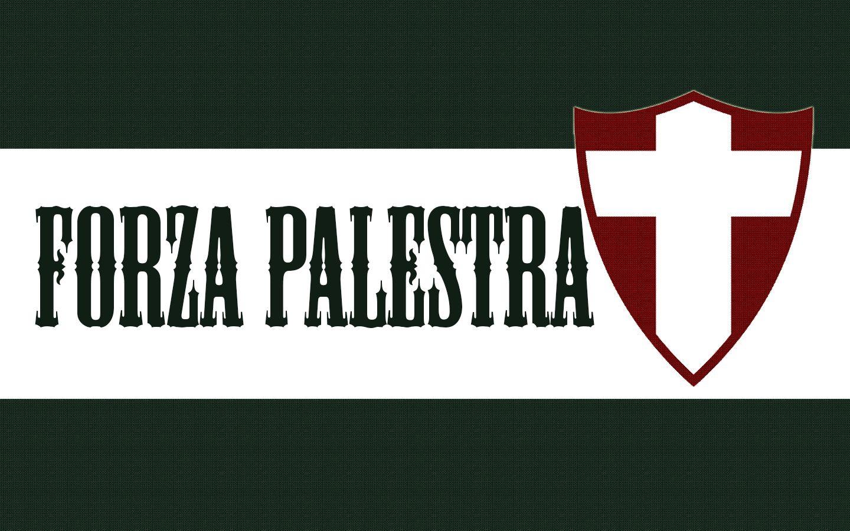 Wallpaper Forza Palestra Com Imagens Wallpaper Palmeiras S E