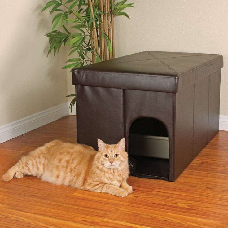 Cat litter box is important furniture to avoid the smell of cat\'s ...