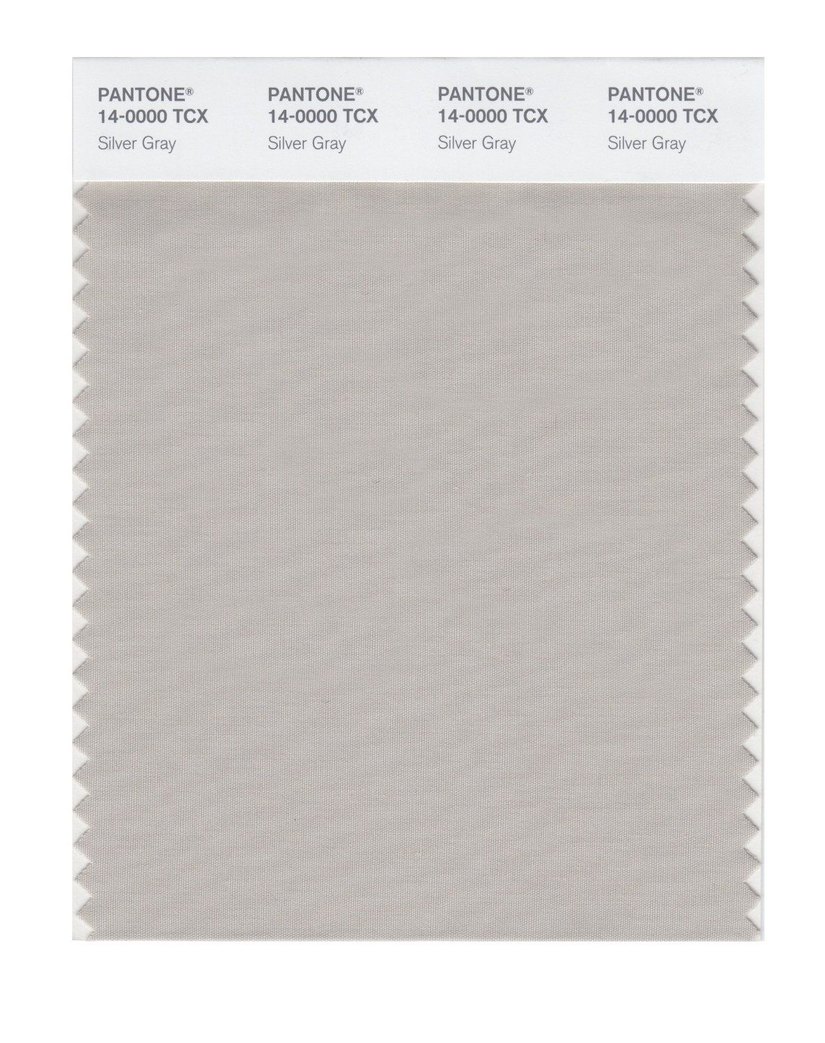 Pantone smart swatch 14 0000 silver gray as light summer for Light gray color swatch