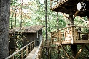 Glamping Sites In South Carolina United States