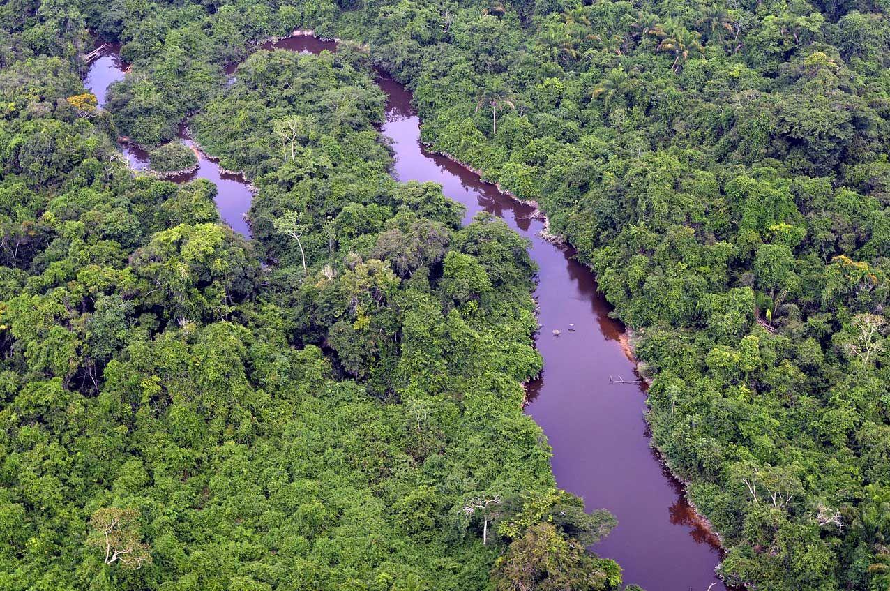 Parque Nacional Serra Do Pardo Para Com Imagens Parques