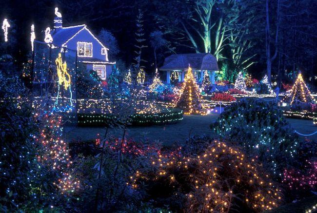 Oregon Coast - Christmas Lights in Coos Bay Looks Like Shore Acres ...